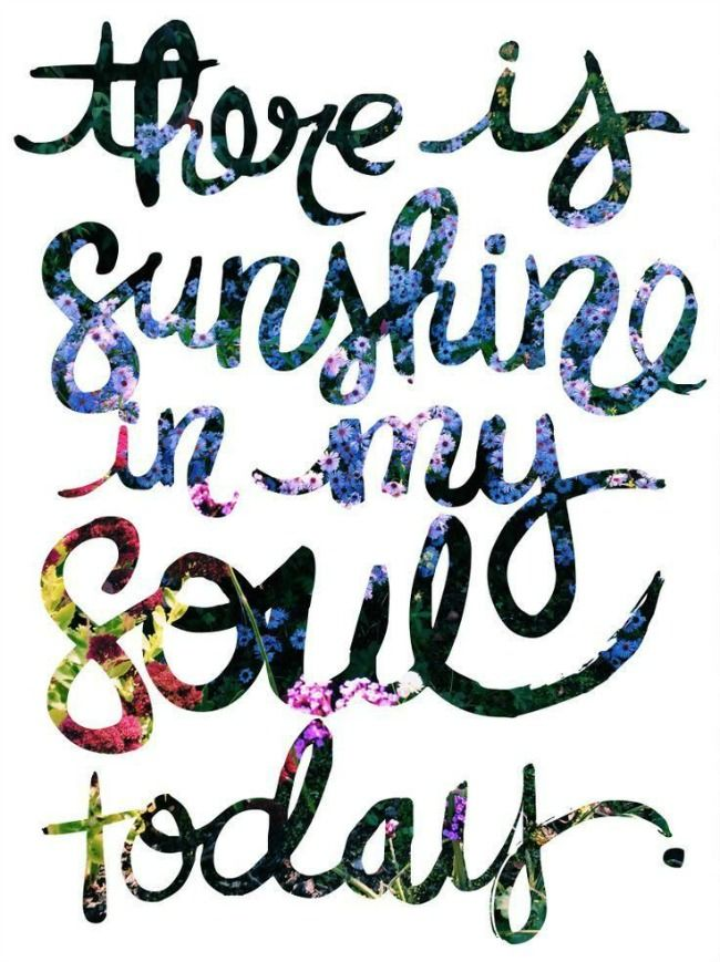 2210ae30a1700d978593a26b4efd7ab7--happy-sunshine-quotes-my-sunshine